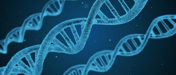 Scientists call for the more personalized use of genome editing